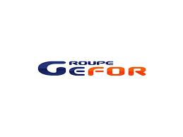 Groupe gefor logo