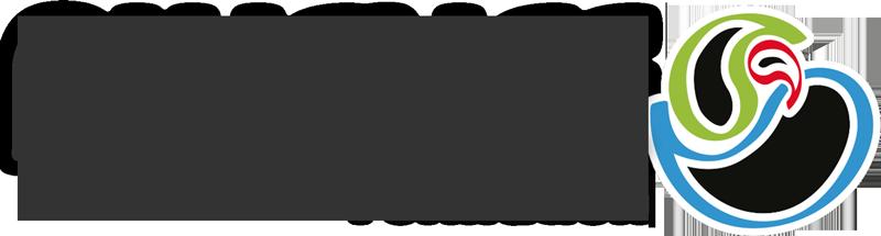 Logo alyence