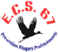 Logo ecs 67